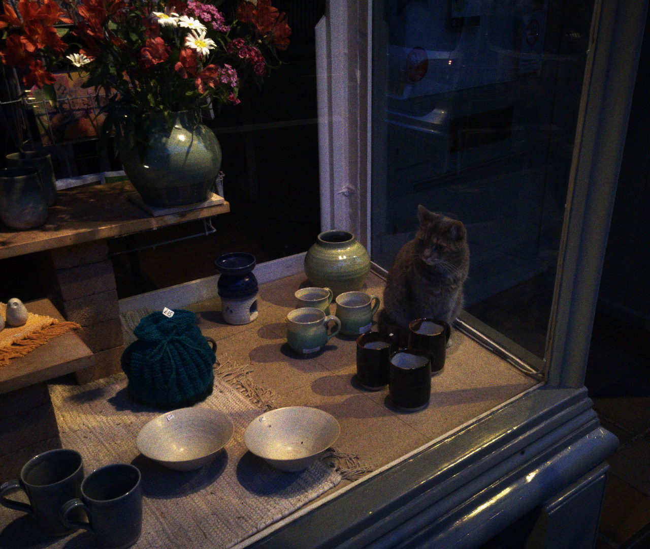 Is this cat looking after the shop on behalf of the owner at night?