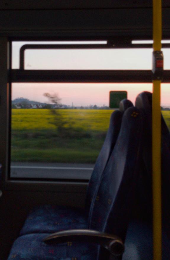 2019年4月20日の夕方、英国のオックスフォードからレディングまでバスに乗った際に撮影した菜の花畑の写真