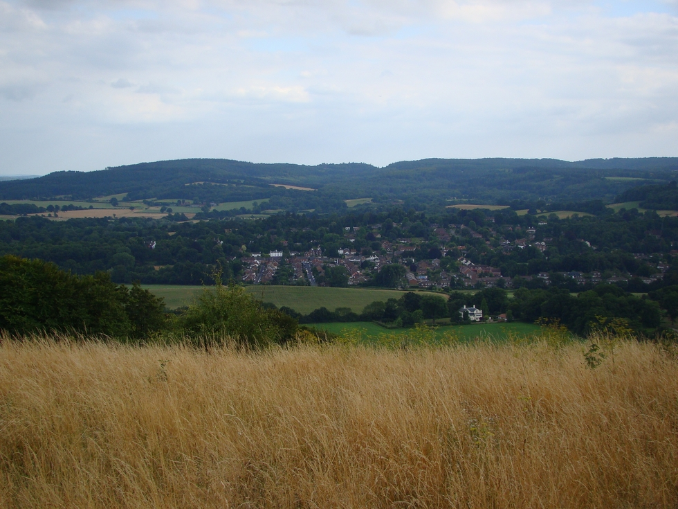 Views from Ranmore Common (10 August 2013)
