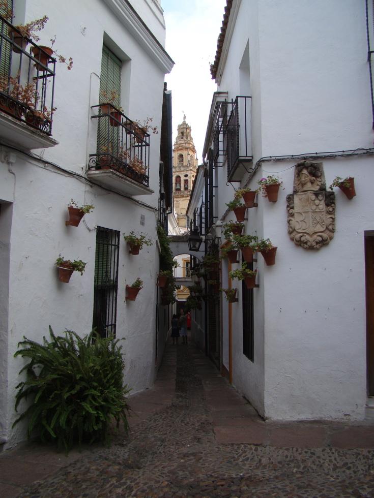 Photograph—Córdoba