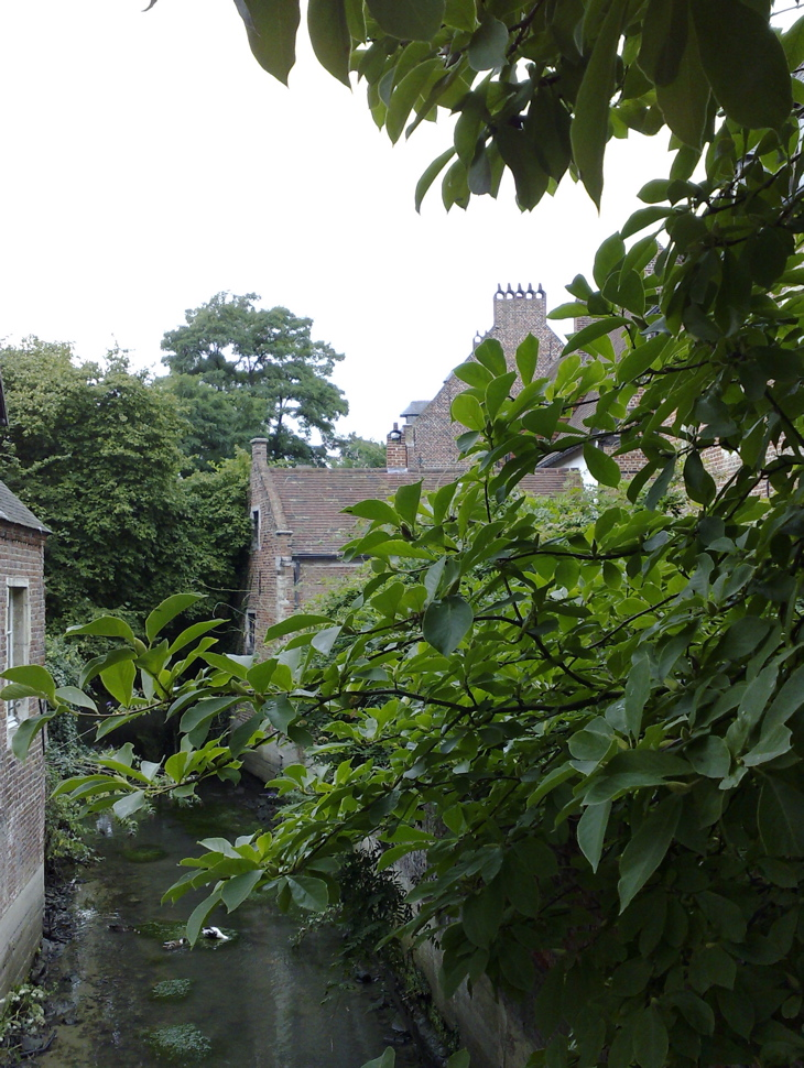Photograph—Leuven—Groot Begijnhof