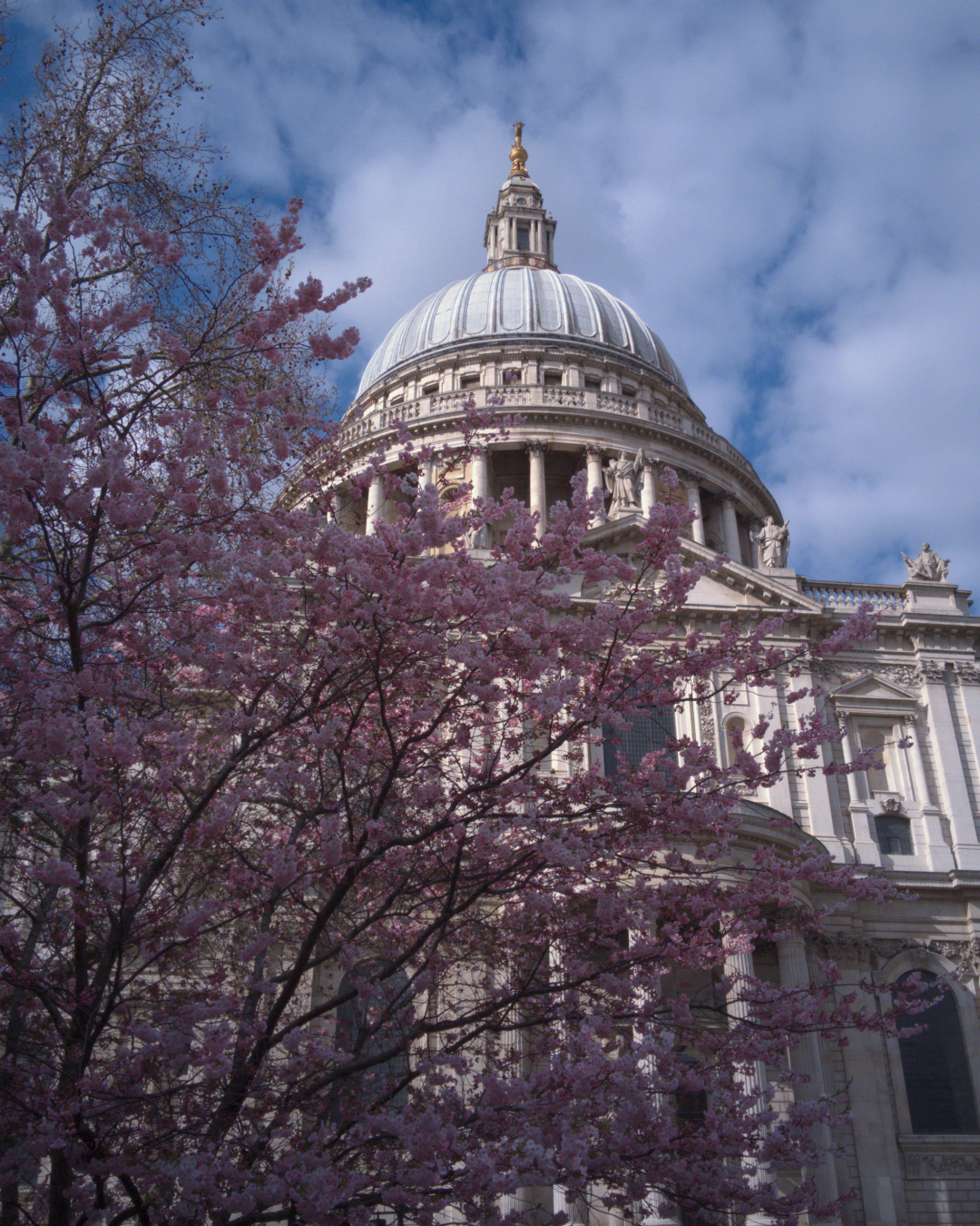 St Paul's Cathedral, London, photographed on 8 April 2016