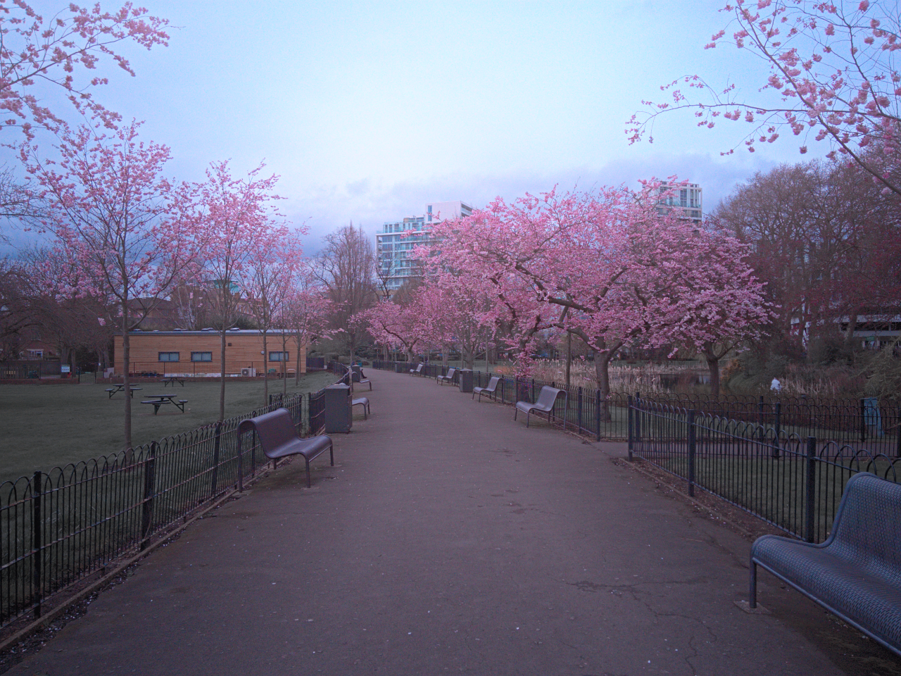 King George's Park, Wandsworth, London, photographed on 9 April 2016