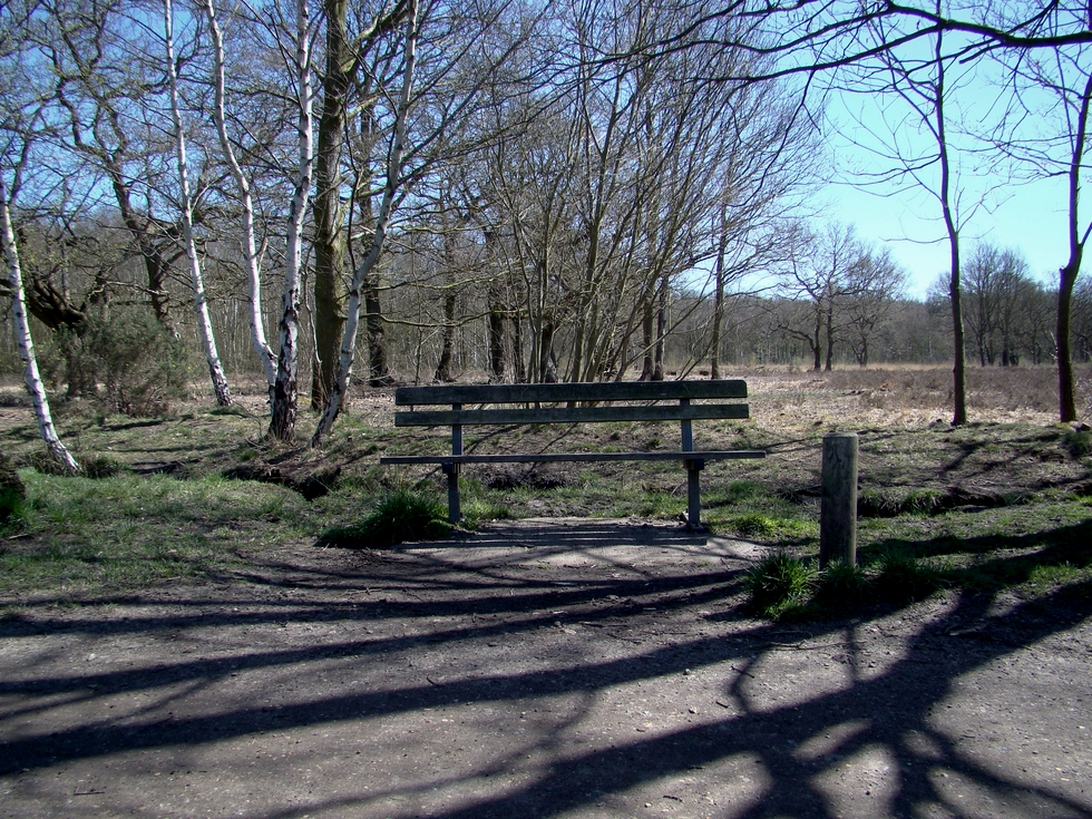 Wimbledon Common (20 April 2013 — 3)