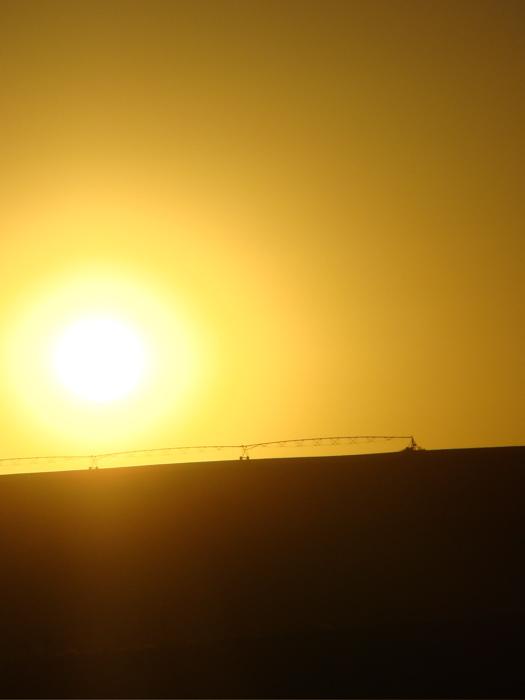 コルドバ・マラガ:高速列車での旅 沈みゆく太陽【2】