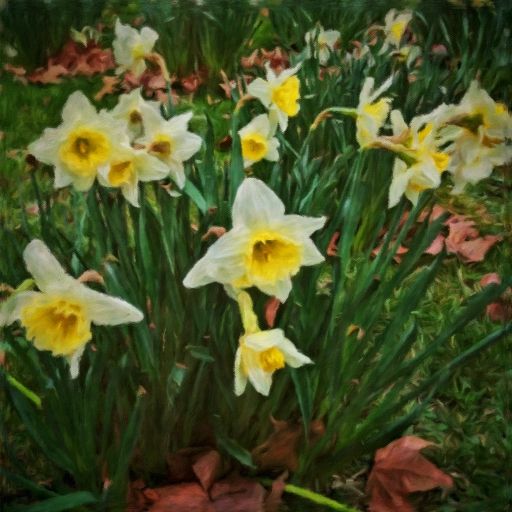 Stock images—512×512—Flowers—Daffodils in St James's Park, London, 10 March 2017.