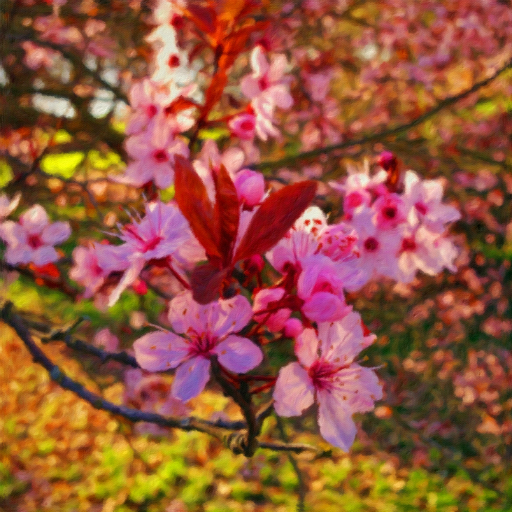 Stock images—512×512—Flowers—Cherry blossoms, 15 March 2017.