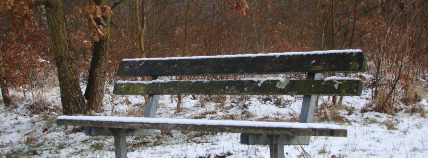 Facebook cover photo: wintry scenes — Click to see more