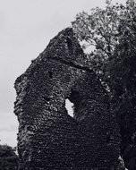 (Thumbnail) Ruins of Westhumble Chapel