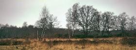 Trees │ 204