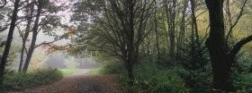 Trees: 226