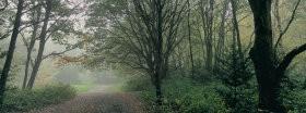 Trees │ 228