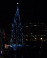 トラファルガー広場のクリスマス・ツリー(夜景写真)