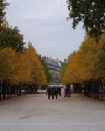 (Thumbnail) Jardin des Tuileries, Paris